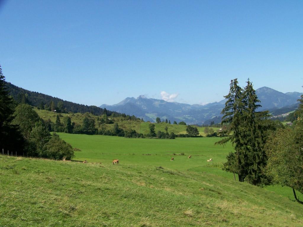 Wildgehege bei Durchholzen in Tirol