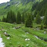 Wildgerlostal