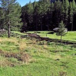 Almweide in Steinrast