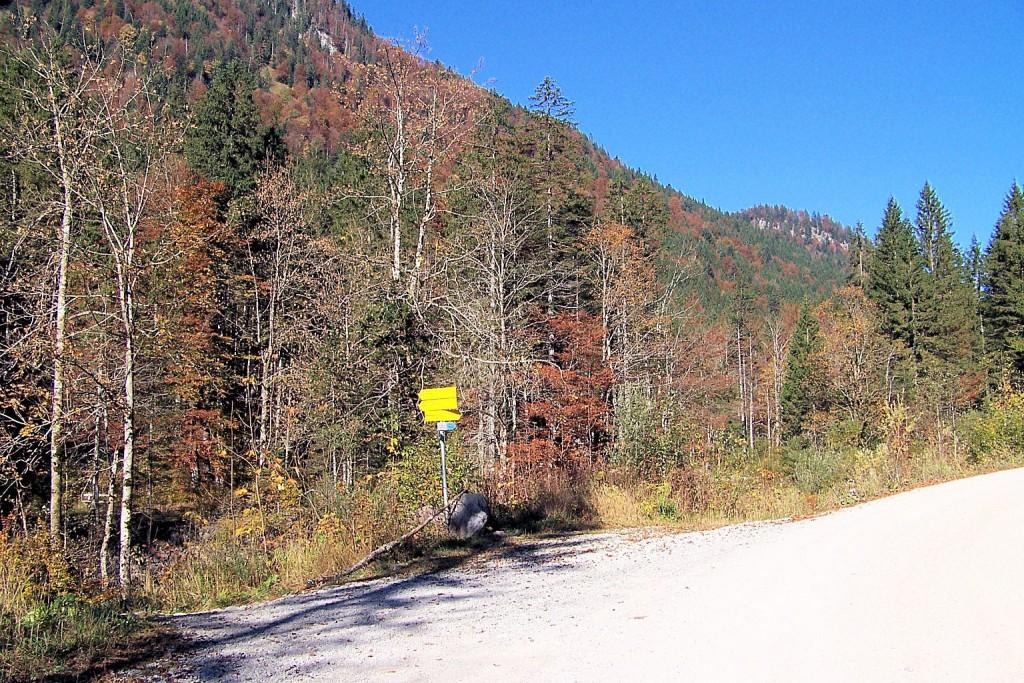 Herbst in Schwarzenbachtal