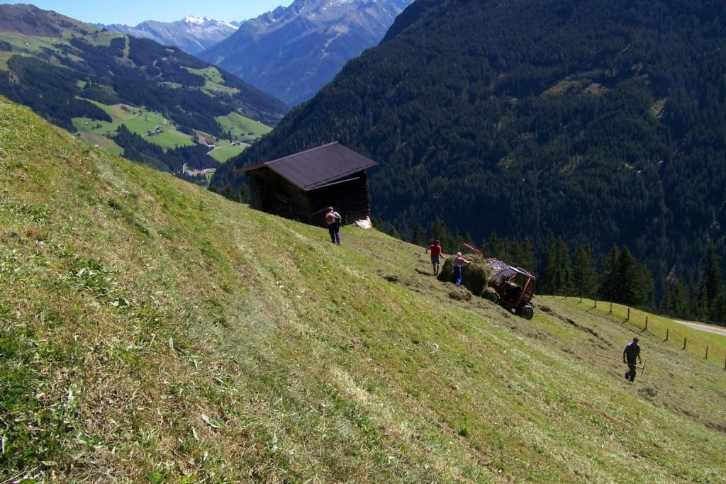 Bauersleute bei der Heuarbeit