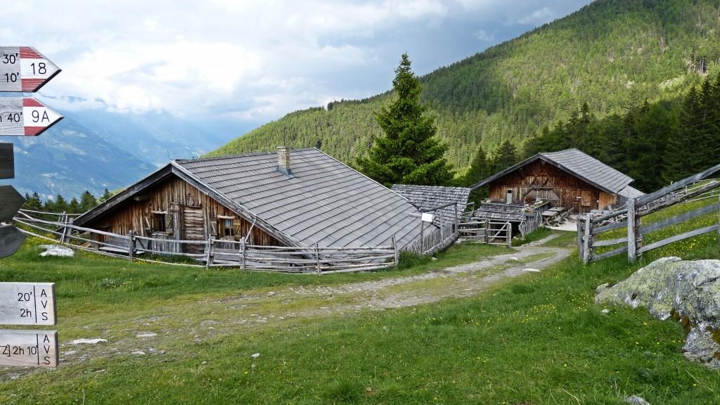 Marzoner Alm in Vinschgau