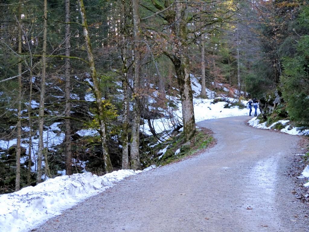 Der Weg zur Oberen Firstalm