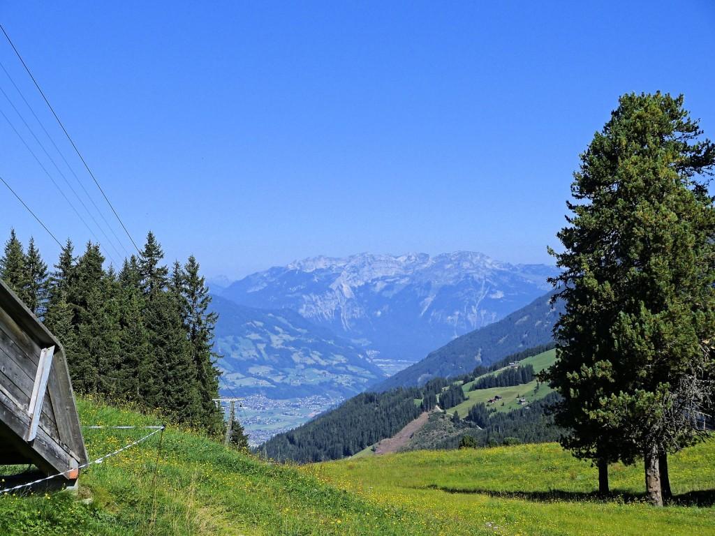 Rosenalmgebiet in Zillertal