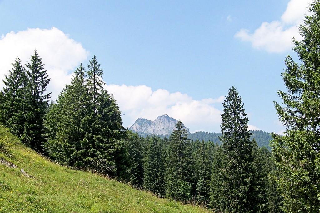 Königsalm Umgebung Hochpass