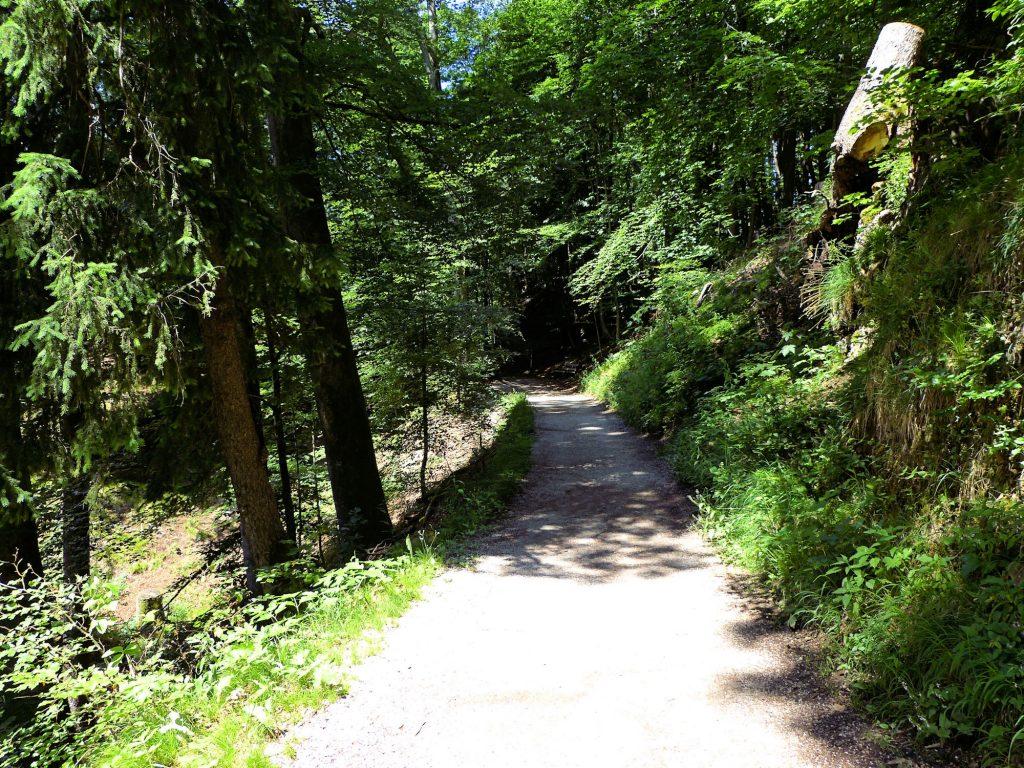 Wanderweg vom Hechtsee