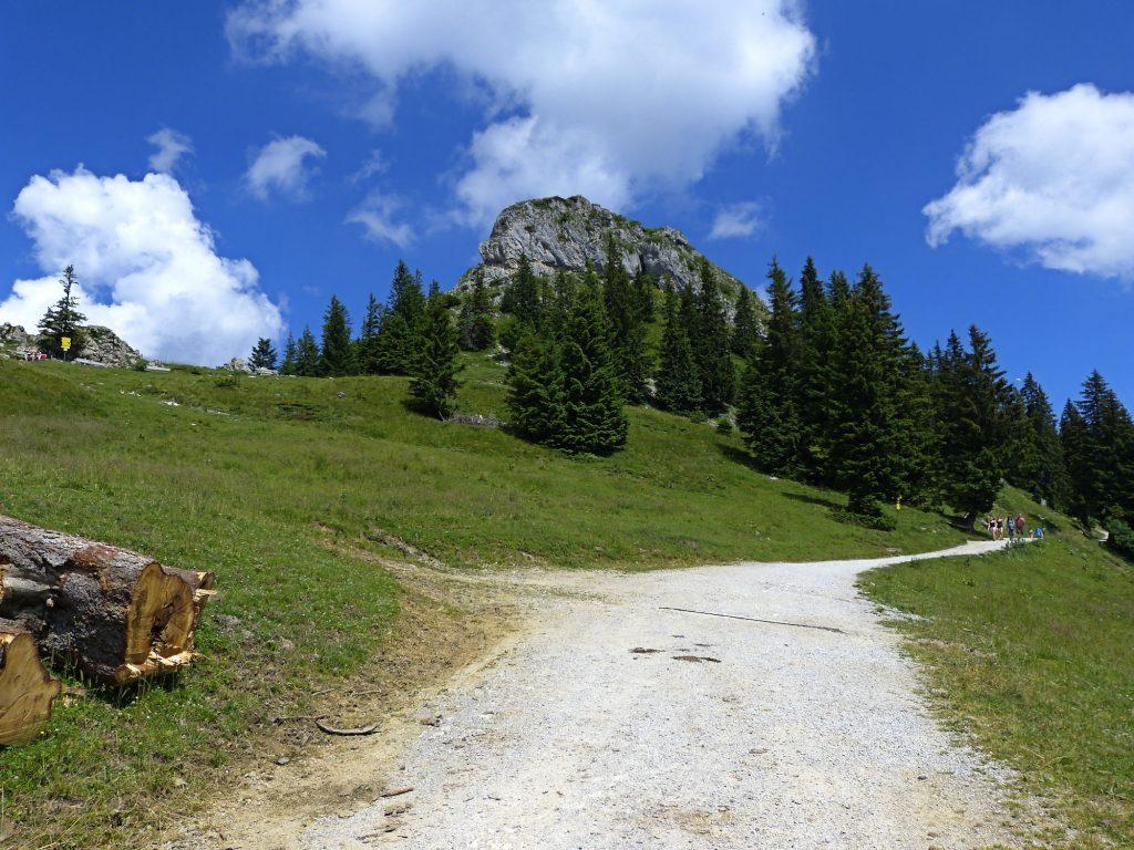 Wanderweg zur Tölzer Ski-Hütte auf Brauneck.